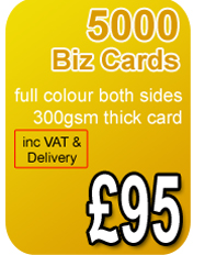 5000 premium business cards 300gsm
